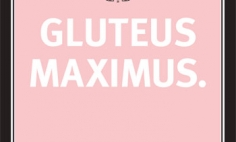 Experience Gluteus Maximus Advertisement
